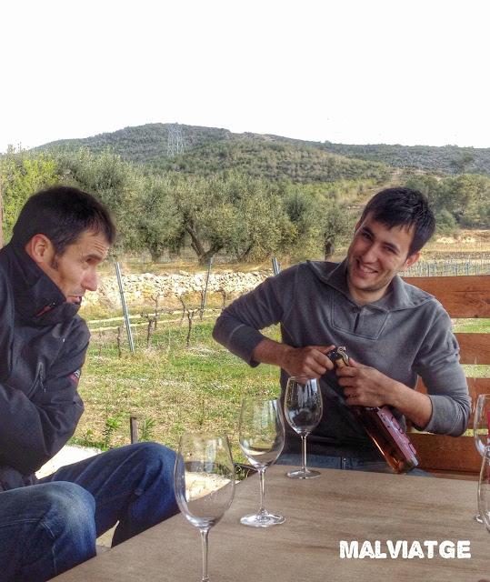 vinos sicus