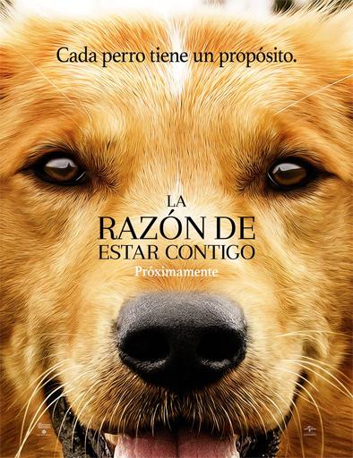 Ver La razón de estar contigo (A Dog's Purpose) (2017) Online