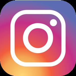 Resultado de imagem para instagram icone