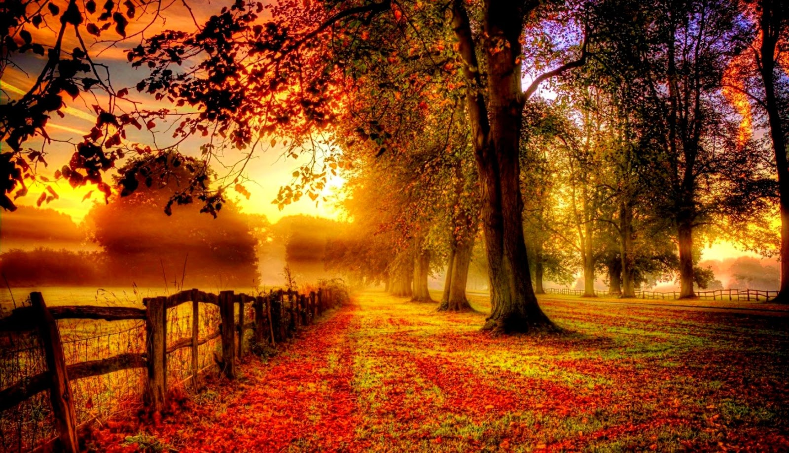 Autumn Backgrounds Wallpaper Wallpapers Abstract