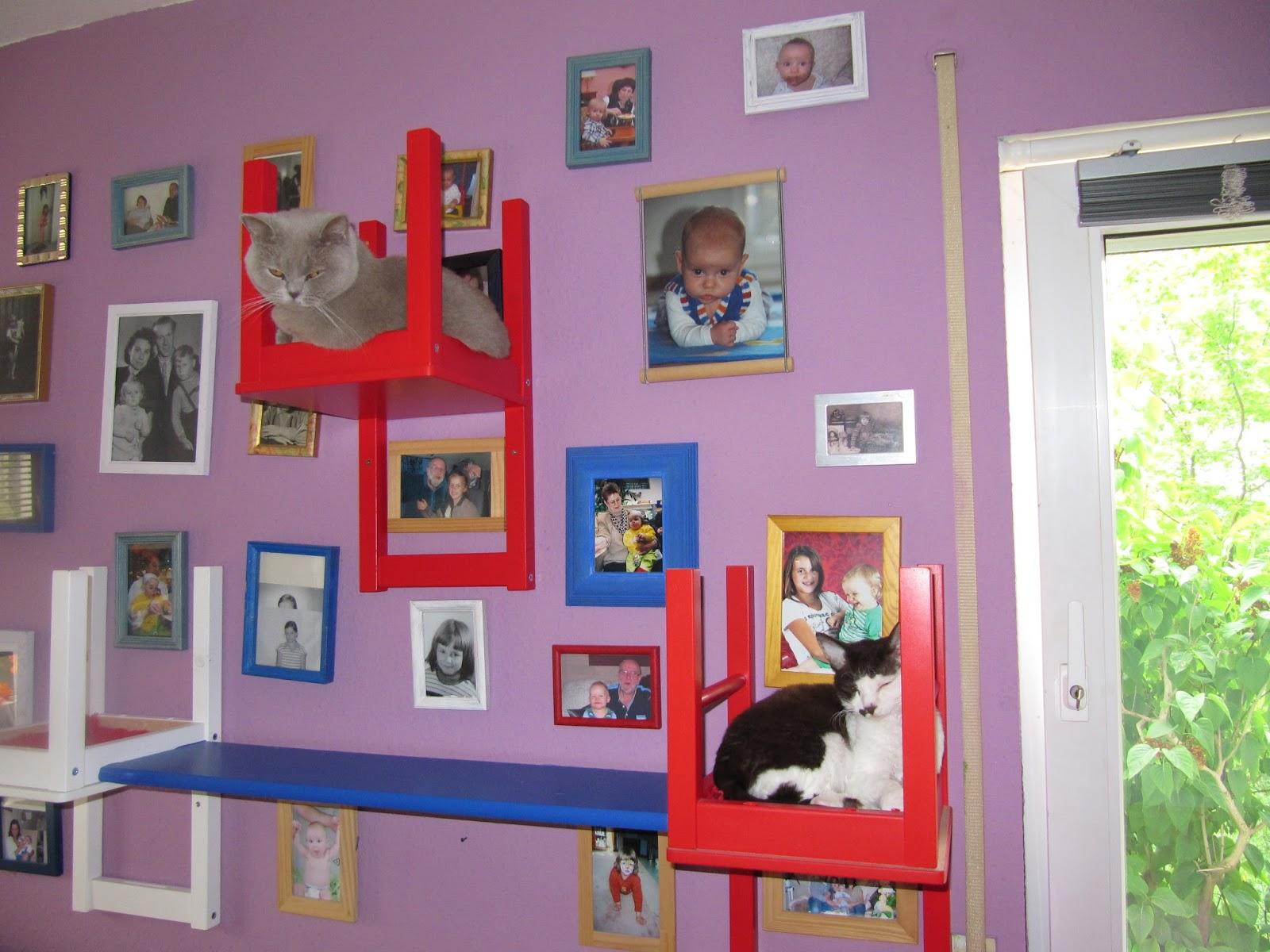 basteln katzen kletterwand einmal anders. Black Bedroom Furniture Sets. Home Design Ideas