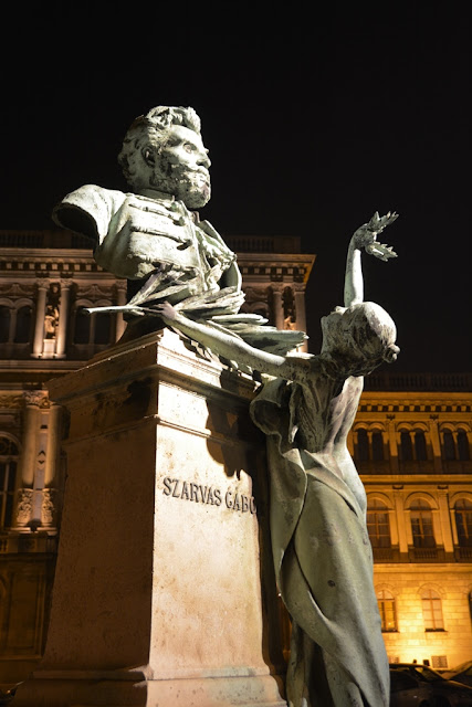 Budaest by night statue
