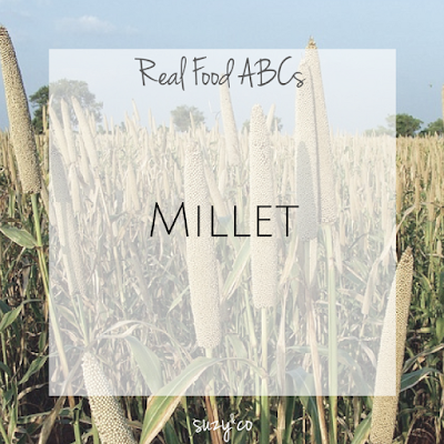 real food abcs - millet