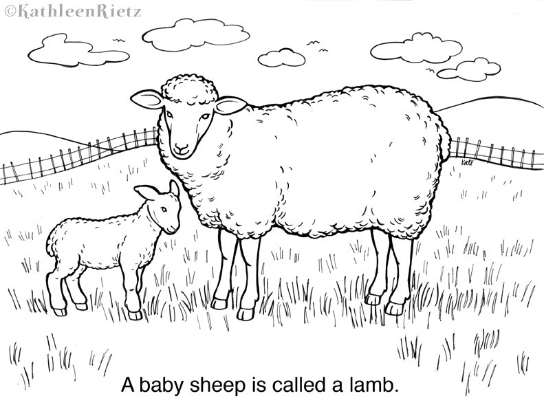 for Coloring page lamb