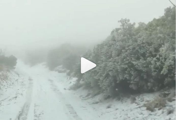 Incredibile, sta cadendo la neve alle Isole Hawaii: impressionanti immagini tempesta Video Instagram Facebook Twitter.