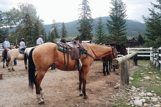 Horseback Riding at Jasper Park Stables