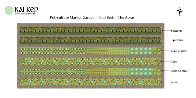 Aceaes_polyculture_research_garden.jpg