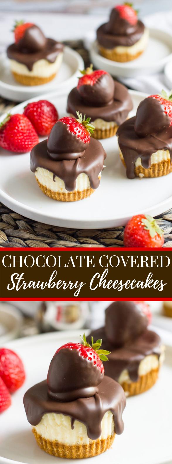 CHOCOLATE COVERED STRAWBERRY CHEESECAKES #dessert #cake
