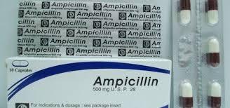 سعر ودواعى إستعمال أمبيسيلين Ampicillin كبسولات مضاد حيوي