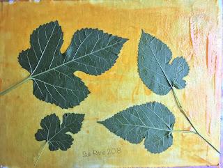 Solarfast prints_Sue Reno_ Image 15