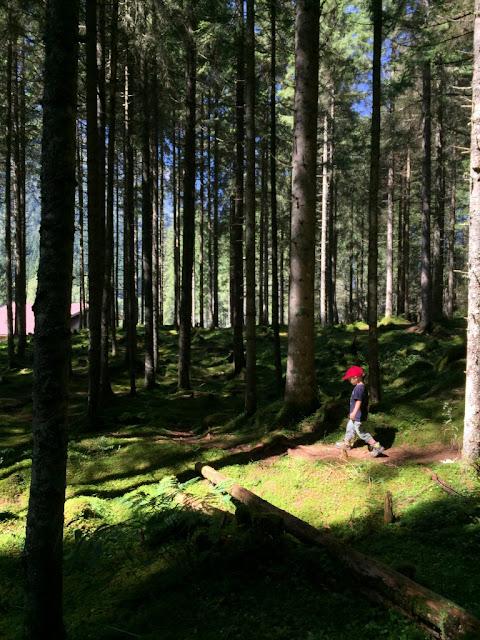 Wald Kids Riesachwasserfall Steiermark Schladming Familienurlaub Berge Jules kleines Freudenhaus