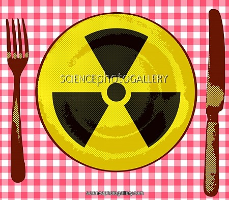 hiljaisen tiedon säilyttäminen ja jakaminen ydinvoimalaitoksessa