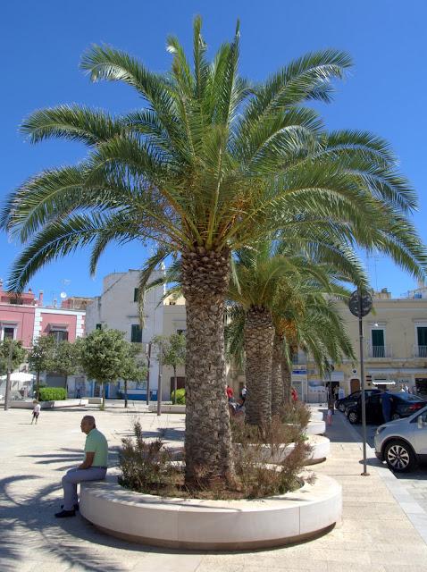 zdjęcia z Bari i okolic, co zobaczyć?