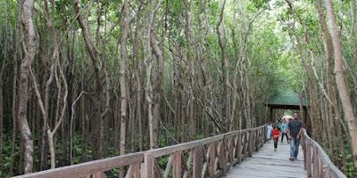 4 Destinasi Wisata yang Wajib di Kunjungi di Sulawesi Selatan