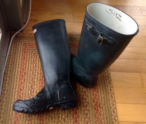 Hunter fishing boots