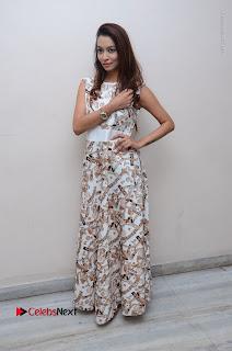 Telugu Actress Reshmi Thakur in Long Dress at Plus One ( 1) Audio Launch  0071.jpg
