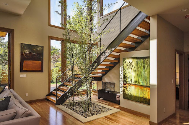 Modern stairs with plant growing by