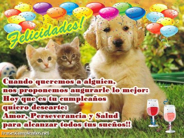 Feliz Cumpleanos Gifs Y Postales Animales Busco Imagenes
