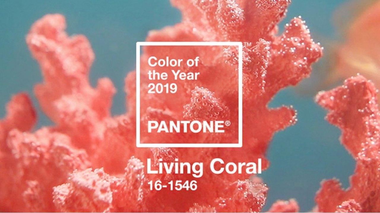 Inspiração: Living Coral