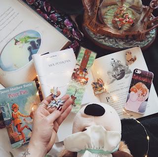 Moi, Peter Pan livre de Michael Roch Coin des licornes Blog bookstagram Toulouse