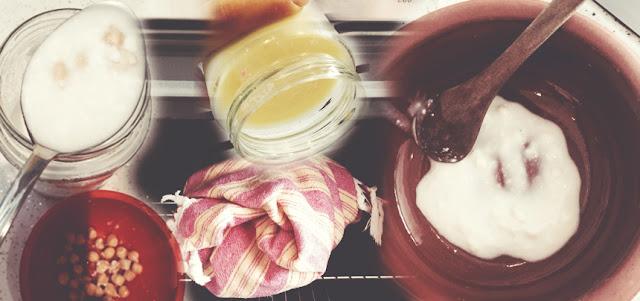 Yogurt mayalama