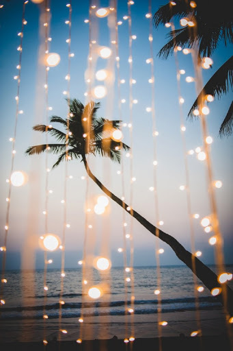 best things to do in goa travel guide