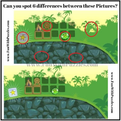 Solution of Spot the Difference Picture Puzzle