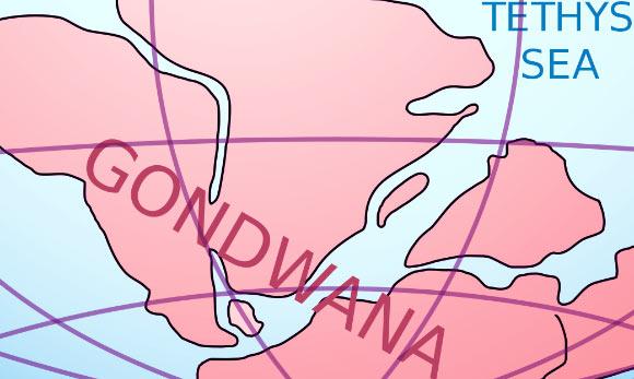 Scientists Reconstruct Break-up of Eastern Gondwana
