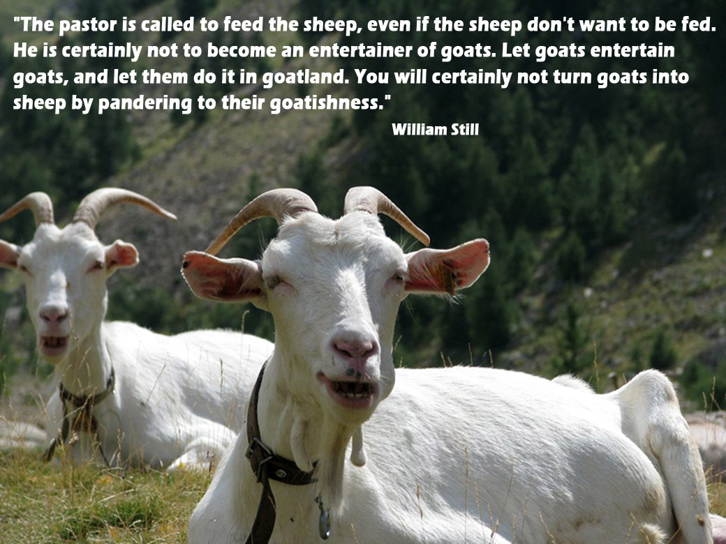 The Parable Of The Sheep And Goat And What It Means Pr