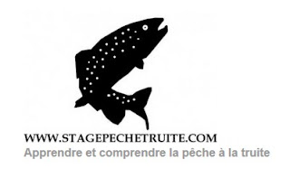 http://www.stagepechetruite.com/