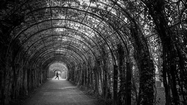 23 dicas incríveis de um fotógrafo profissional para dar um charme maior as suas fotos tiradas na rua
