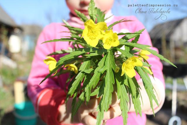 Весна, май, блог Вся палитра впечатлений