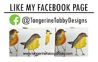TangerineTabbyDesigns on Facebook