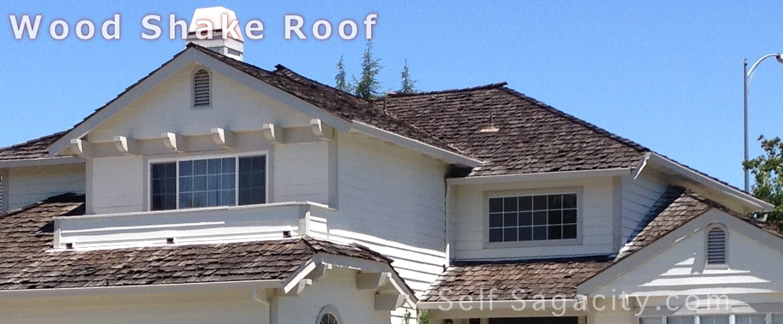 What Type Of Roof Is Best For Your Home Self Sagacity