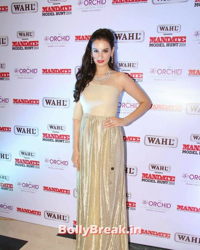 Evelyn Sharma, Mandate Model Hunt 2014 Grand Finale Photo Gallery