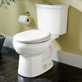 becoming the ultimate housewife how to clean a toilet and rid of odor. Black Bedroom Furniture Sets. Home Design Ideas