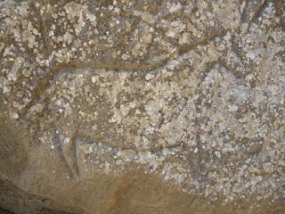 Petroglifo de Qobustan. Grabado de caballo