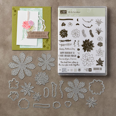 Oh So Succulent Bundle, Stampin' Up!