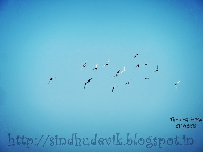 Flying Birds in the clear blue sky. What a discipline?
