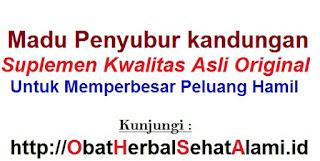 Jual (khasiat)MADU PENYUBUR KANDUNGAN AL MABRUROH asli berBPOM~agen resmi