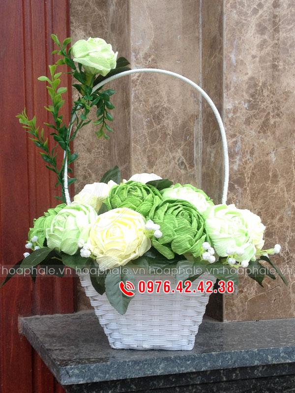 Hoa hồng giấy nhún - Hoa giấy nhún