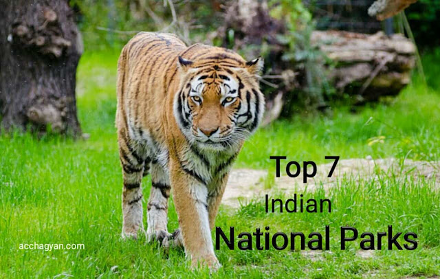 Top 10 National Parks of India, Indian national parks, tiger researve of india, top 10 national parks in India, tiger safari, bangal royal tiger, national animal of India, tiger, bagh,