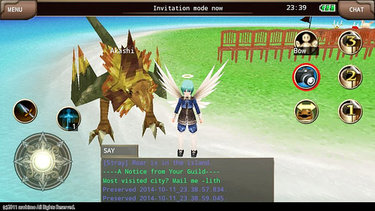 Iruna Online Pets
