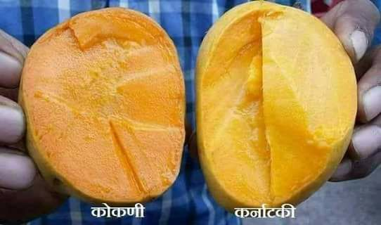 How to choose mango