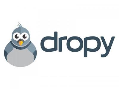 Dropy vulgarise les places de marché