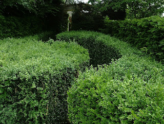 Garden design hedge Kingston Maurward Green Fingered Blog