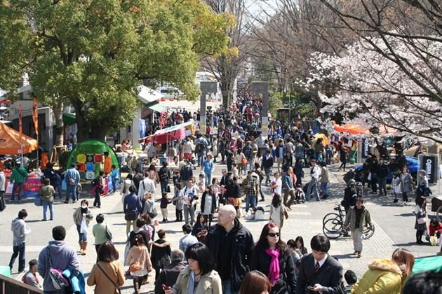 OUTDOOR DAY JAPAN 2017 at Yoyogi Park, Tokyo