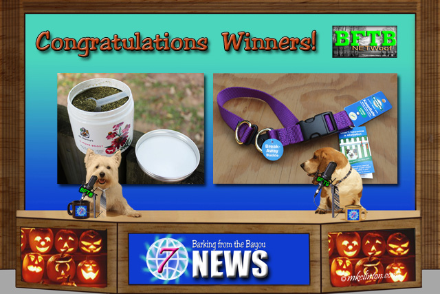 BFTB NETWoof Dog News congratulations our contest winners