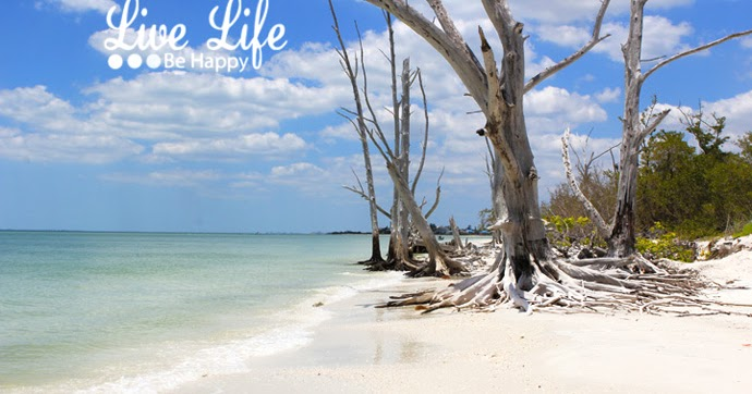 Live Life Be Happy One Of The Most Beautiful Beaches In Florida