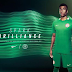 NFF unveil new jersey for Super Eagles after signing multimillion Naira deal with Nike (photos)